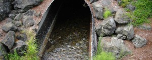 Flood and Water Management- Assessment of Culverts and Pipes